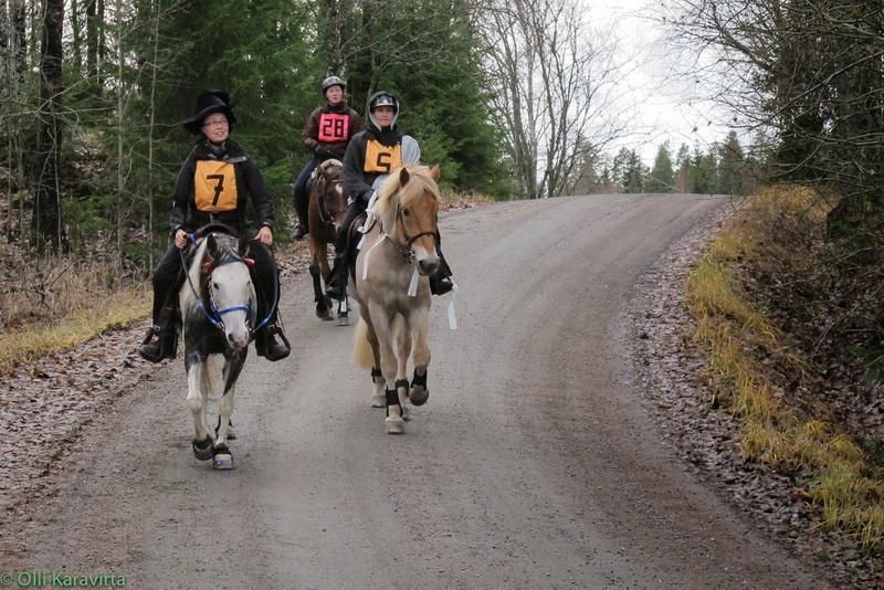 Kuvat: Mari Marjatsalo, Olli Karavirta ja Hopon poppoo