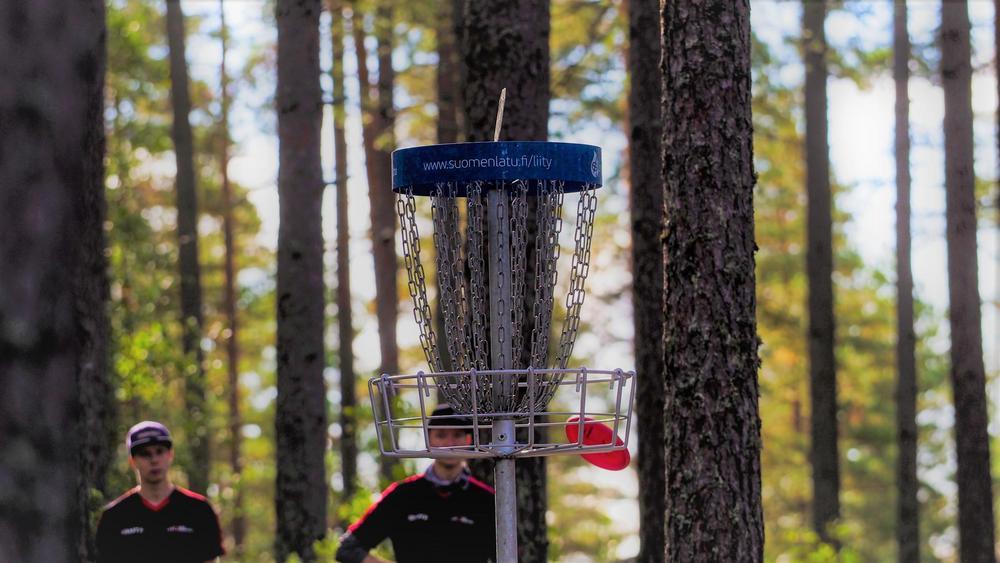 Frisbeegolfkori. Kuva: SFL/Tuomo Rikman