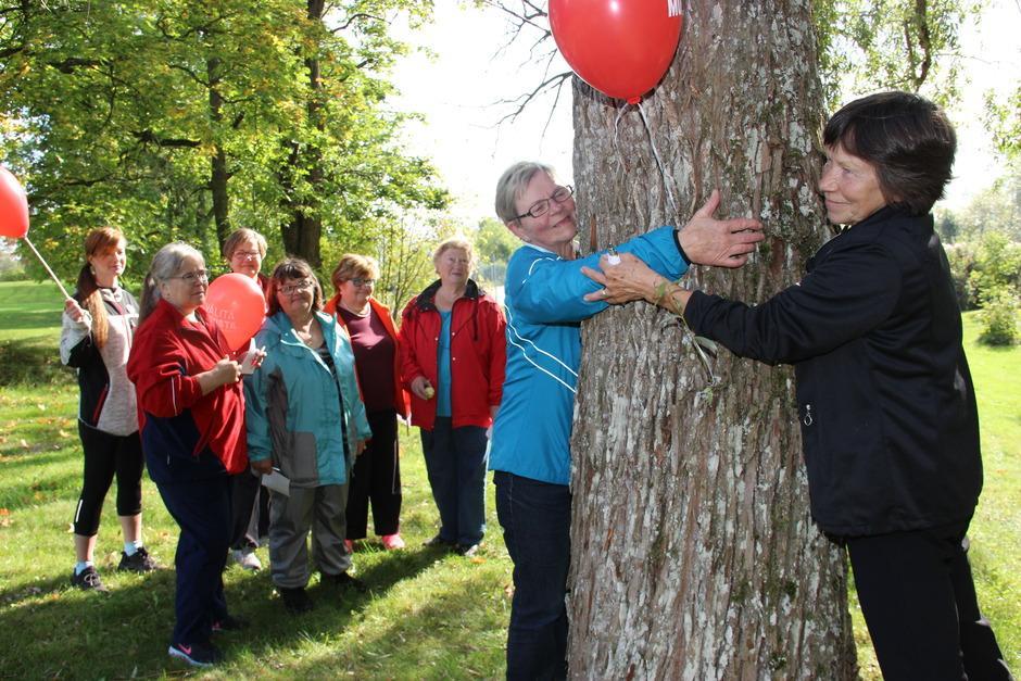 Muistikävelyn rastilla arvioitiin puun ympärysmittaa. Kuvaaja Marko Dahlman.