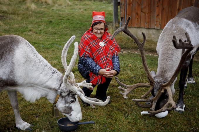 Kylätalkkari Anni Äärelä porojen kanssa.