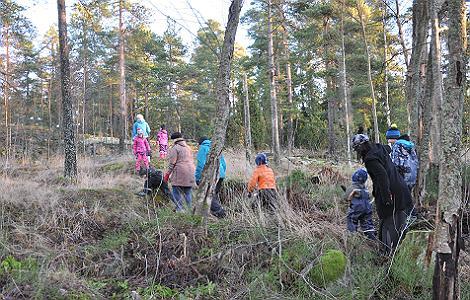 Yhden vanhemman perheet menevät metsään kävelemään.