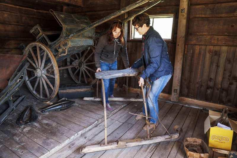 Heidi Pelkonen ja Eeva-Liisa Ylinampa viimeistelivät perjantaina tallin näyttelyä ja siirtävät hevosten kilpa-ajokelkkaa. Se on kotiseutumuseon kokoelmasta kuten muutkin tallin esineet. Kuva: Pekka Aho.