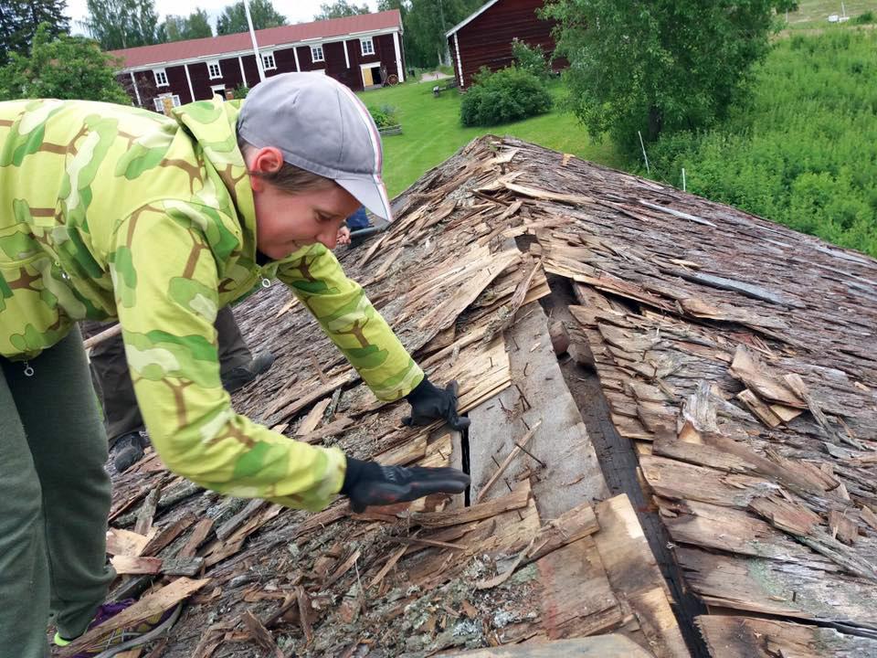 Vilhelmiina renovating a new shingle roof.