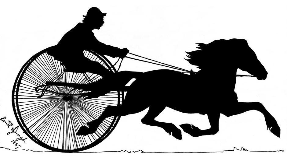 Punarautias suomenhevonen Kirppu (1879–1907) syntyi Pöykkölän tilalla, joka nykyisin on Rovaniemen kotiseutumuseona. Kirppu oli synnynnäinen juoksijalahjakkuus, joka voitti arvokilpailuja enemmän kuin yksikään hevonen siihen saakka. Varjokuva Ernst Ljungh, 1887. Teoksessa L. Fabritius: Juoksijaori Kirppu jälkeläisineen (1927).