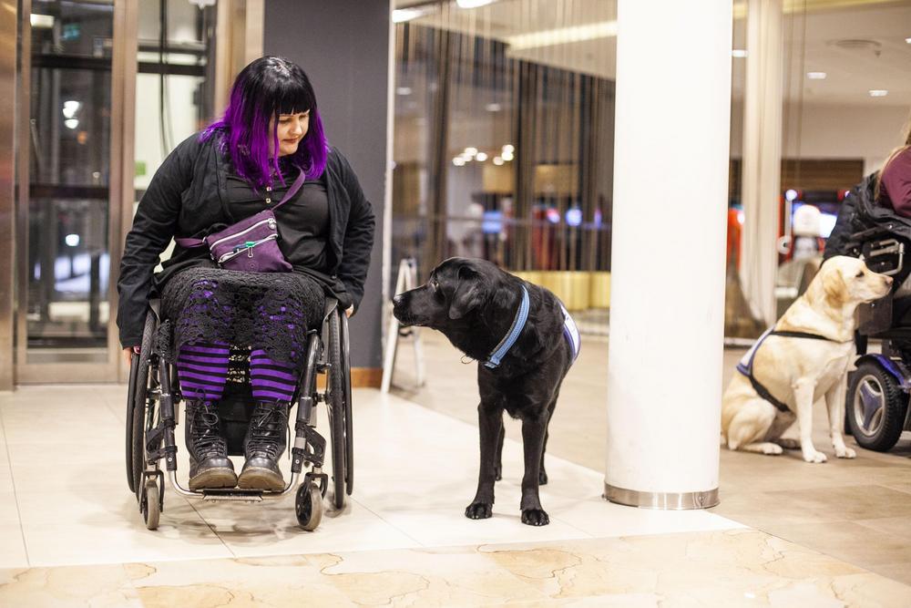 Nainen istuu pöyrätuolissa ja hänen vierellään on musta labradonnoutaja. Koira on  avustajakoira, ja he katsovat toisiaan.