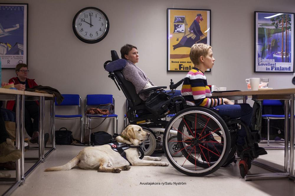 Kuvassa on luokkatila ja menossa on kurssioppitunti.  Tilassa on 3 henkilöä joista 2 henkilöä istuu pyörätuolissa ja yksi henkilö istuu tuolilla. Vaalea labradorinnoutaja makaa kuvassa lattialla.