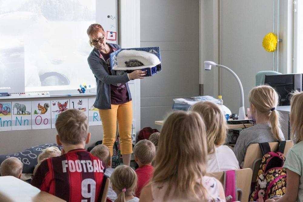 Lapsia Suomen Luonnonsuojeluliiton järjestämällä norppaoppitunnilla