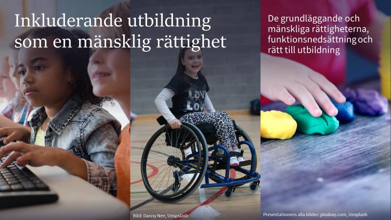 Inkluderande utbildning som en mänsklig rättighet - De grundläggande och mänskliga rättigheterna, funktionsnedsättning och rätt till utbildning -bild