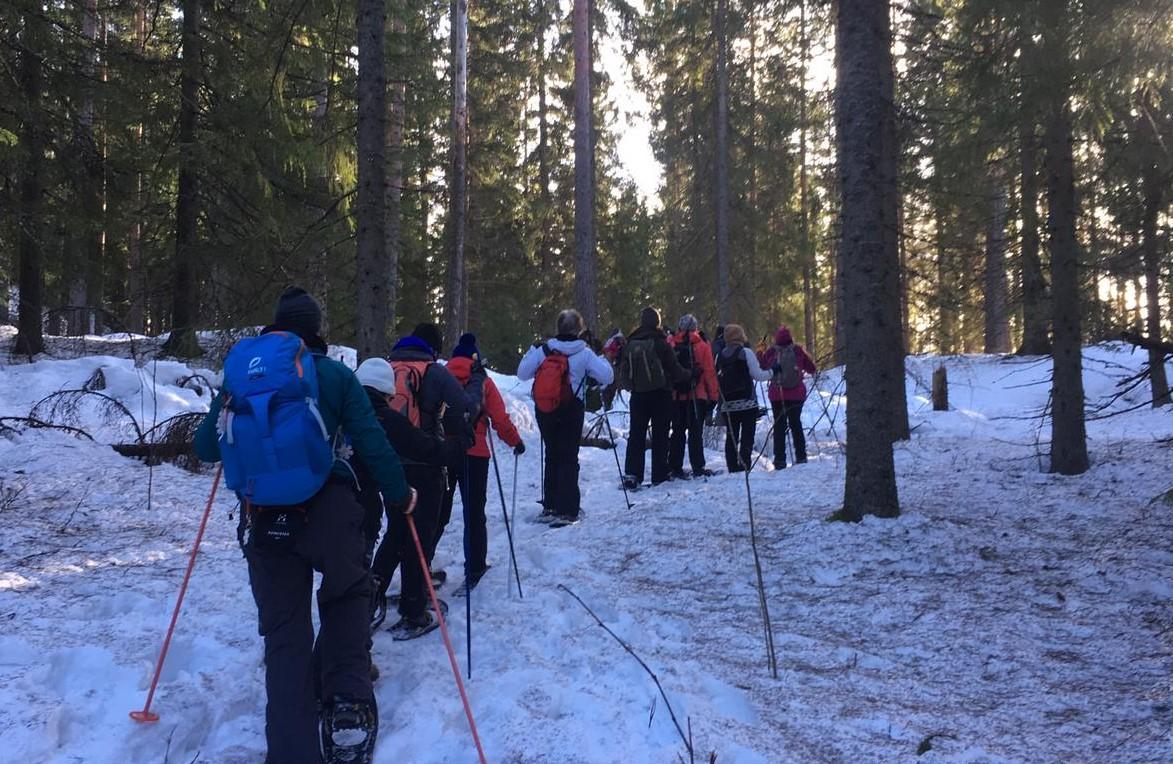 Kuvassa Espoon Ladun jäseniä lumikenkäilyretkellä.