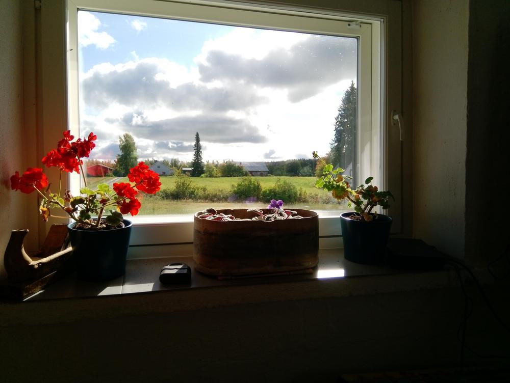 kaunis maisema ikkunasta