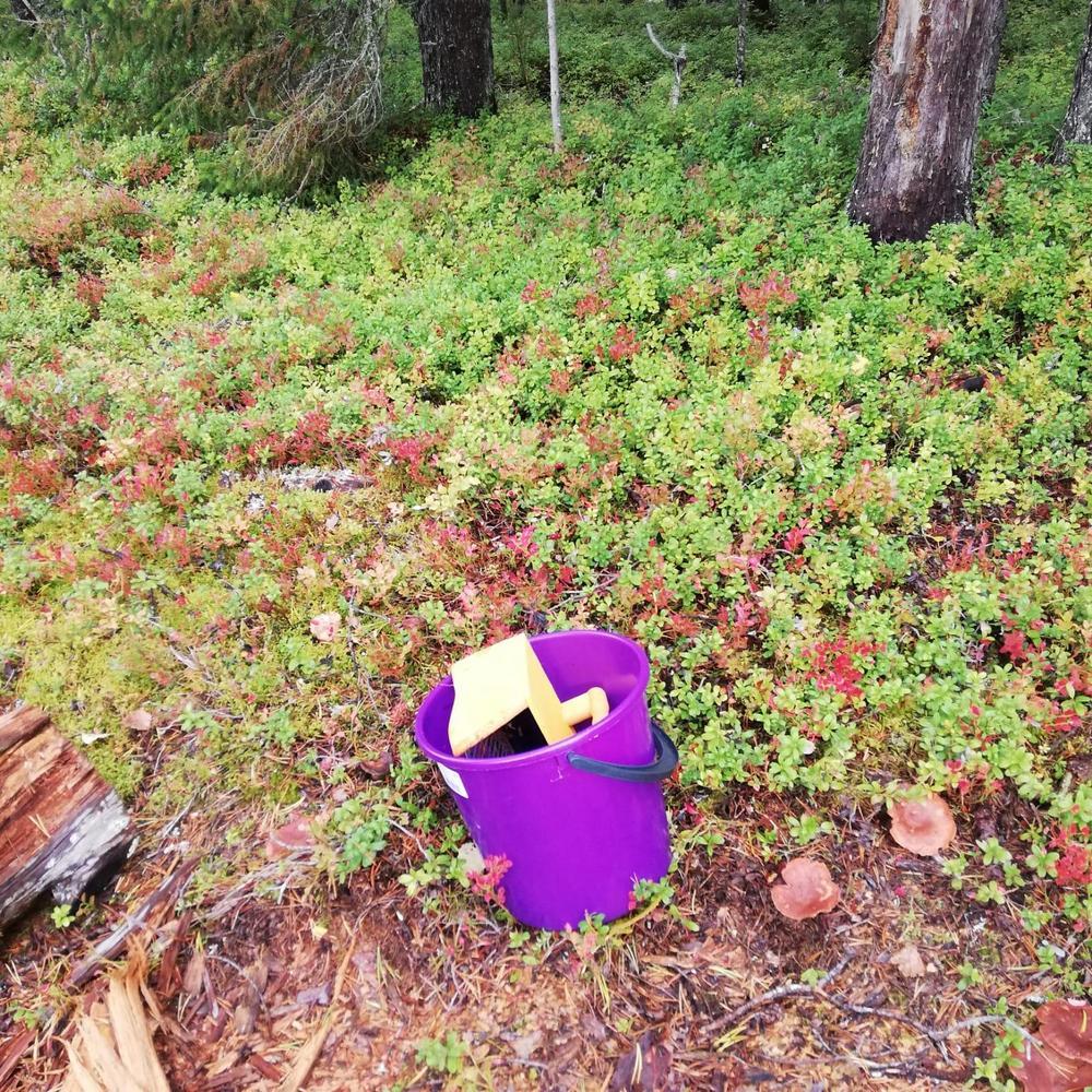 Ämpäri ja rohmu metsässä mättäällä.