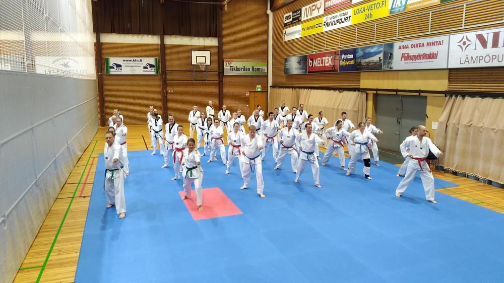 Taekwondon harrastajia harjoittelemassa perustekniikkaa.