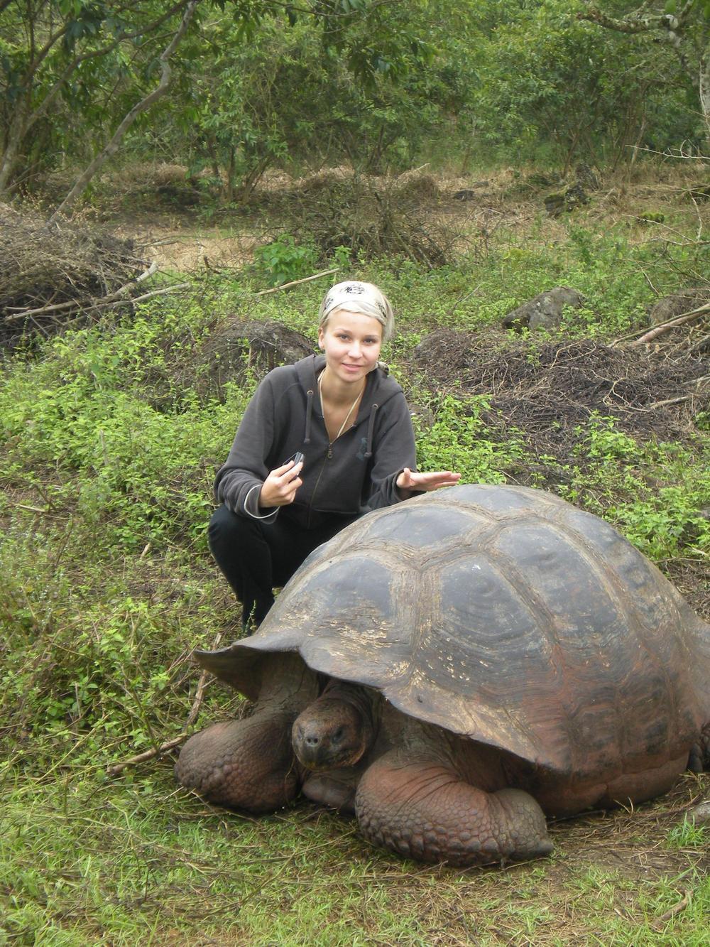 Nuori nainen kyykistyneenä ison kilpikonnan rinnalle.